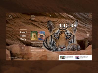 Dynasties - Tigers Raj