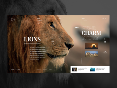 Dynasties - Lions Charm