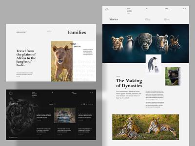 Dynasties - Stories format stories dynasties documentary biography art website web ux ui design