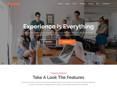 Aaina - One Page Parallax WordPress Theme