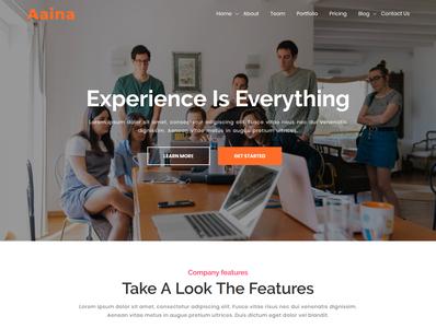 Aaina - One Page Parallax WordPress Theme