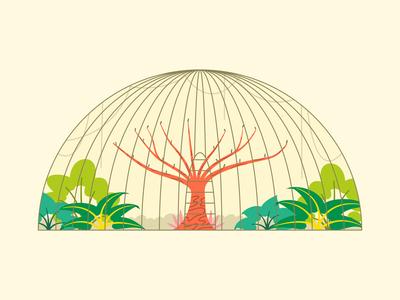 Birds Park park garden nature bird illustration flat affinity designer