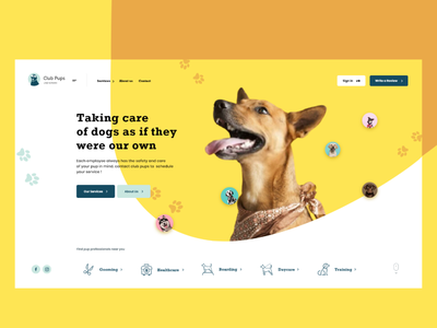 Club Pops UI concept For dogs club landing page uxdesign ux uiux ui uidesign design web design pops dogs