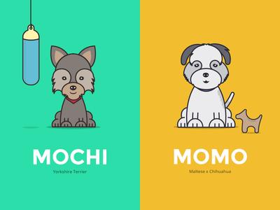 Momo & Mochi