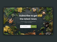 Day 025 of 100 daily ui challenge - Subscribe