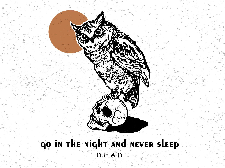 Owl owl skull art vector graphic  design graphic art illustration