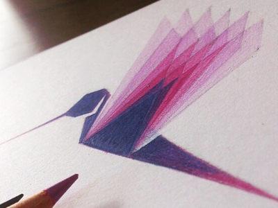 : : Hummingbird .