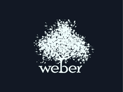 Logo design by 👉 uxdbox single colour flat logo elegant logo font logo typography clean logo branding logo
