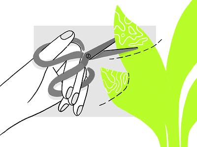 Plants care illustration 🌱 vector plants care guide product design flat design character illustration plant scissors hand illustration hand charachter darkcube 2d digitalart illustration