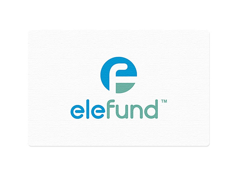 elefund logo monogram.unused mike erickson logomotive f e logo