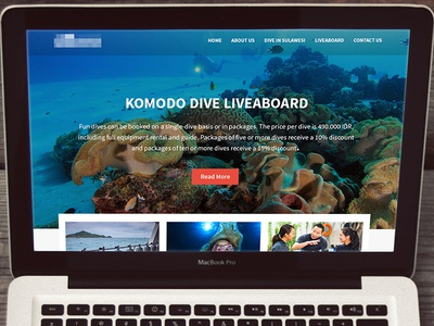 Diving Official Website webdesign web website clear clean elegant coral blue sea diving