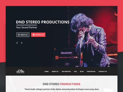 DND Stereo Productions naistudio startup design webdevelopment photoshop psd layout webdesign website music sound system dndstereo