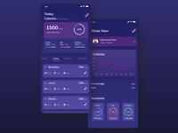 Calories Counter Dashboard Fitness app, Dark Version