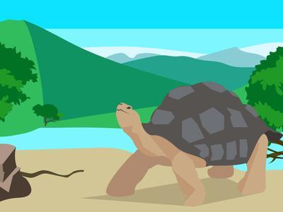 Tortoise near the river minimal flat vector artist turtle vector illustration illustrator nature river tortoise illustration