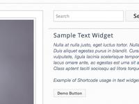 BoxIt - A Premium Wordpress Theme