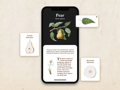 Pear Botanical App UI plant illustration sketch app design ui typography userinterfacedesign
