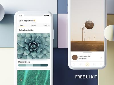 ColorMe - Free UI Design Kit for Sketch sketchtemplate uikit business illustration ecommence design ui userinterfacedesign