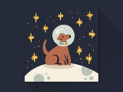 A dog on the moon?