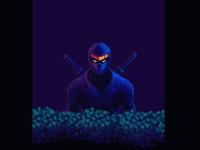 Silence Ninja