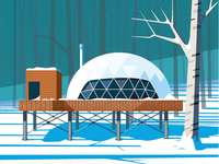 Unused geo dome illustration from my Time cover.  #time