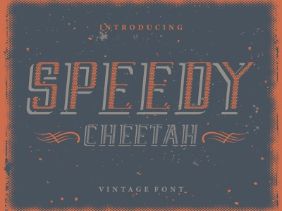 Speedy Cheetah - Vintage Font logo typography calligraphy alphabet retro font vintage font vintage typeface font design font awesome font