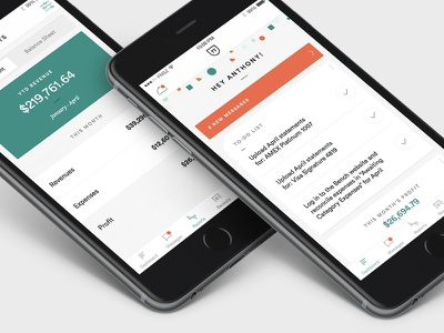 Bookkeeping iPhone App funsize white ios ui iphone finance bookkeeping