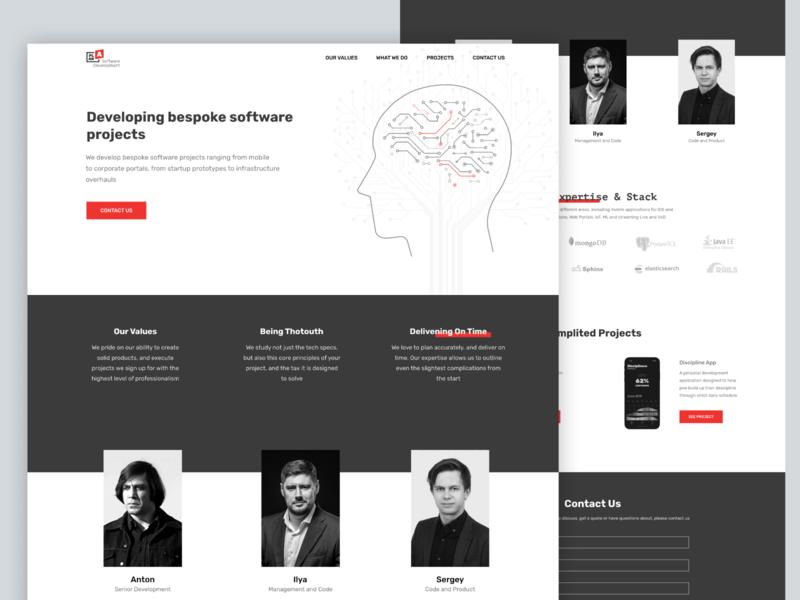 Software Development Website developers uiux portfolio website design development software