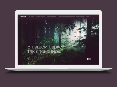 """Lesok"" website concept"