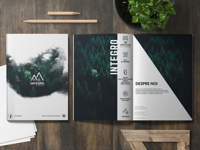 Flyer Design for a Camp