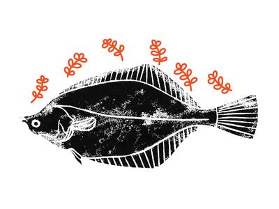 #Fish Illustration