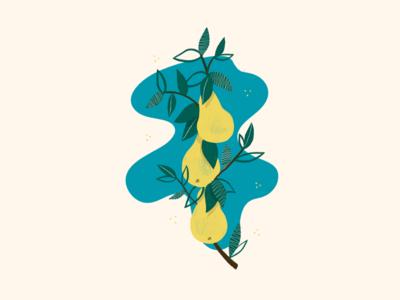 illustration //