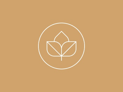 Seed logo graphic icon line illustration thin lines