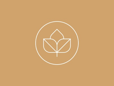 Seed logo graphic icon line illustration thin lines