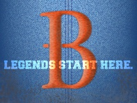 Binghamton Mets Logo Redesign