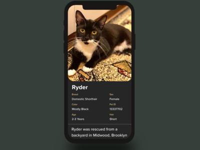 Concept Pet Adoption Profile