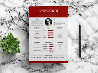 Free Great Resume Template
