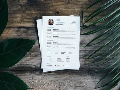 Free Entrepreneur Resume Template