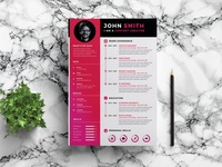 Free Timeline Infographic Resume Template
