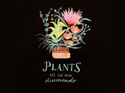 plants are the new diamonds