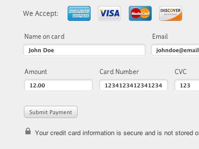 We Accept credit stripe form css3 html personal site development