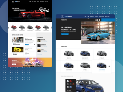 Ford Barigui - Website