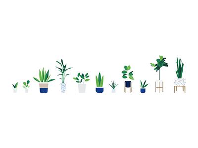 Plants nature flowers plants illustration vector