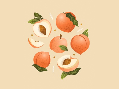 Melba pêche draw food vegetal healthy summer fruit instagram flowers illustrator illustration peach