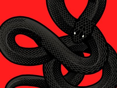 Black snakes wacom bamboo adobe illustrator vectorart vector illustration snake skull branding illustration digital vector art illustrator graphic design vector design illustration