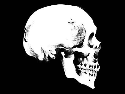 Dead adobe adobe illustrator skull logo skull art texture digital gore stay rotten illustration digital vector art illustrator graphic design vector design illustration