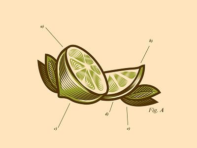 Lemon skull gore culture pop vector design character cartoon illustration