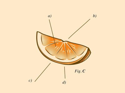 Orange lupulo beer gore culture pop vector design character cartoon illustration