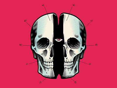 Coagula digital illustrator stay rotten illustration digital vector art graphic design gore vector skull character design illustration
