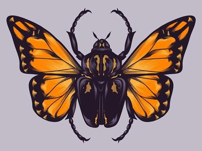 Butterfly Beetle