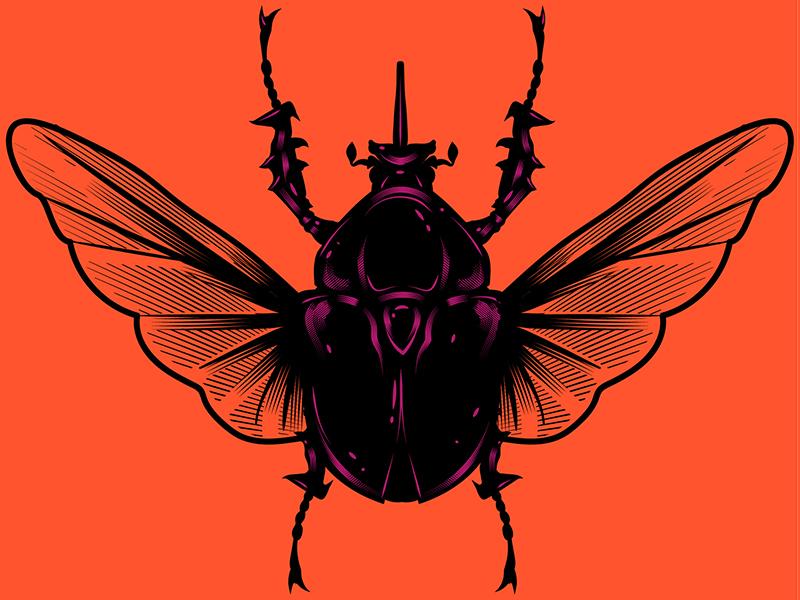 Beetle adobe illustrator draw beetle vintage adobe typography texture digital stay rotten vector art illustration digital vector cartoon illustrator graphic design character design illustration